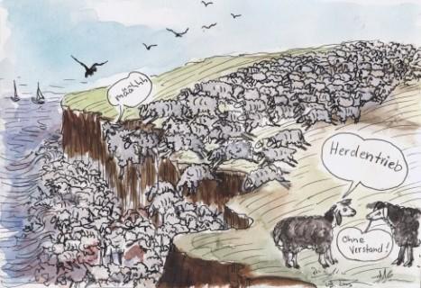 Herdentrieb (Schafe)